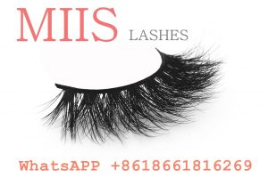 stock 3d bottom eyelashes